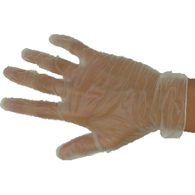 Powder Free Large Vinyl Gloves Carton Special